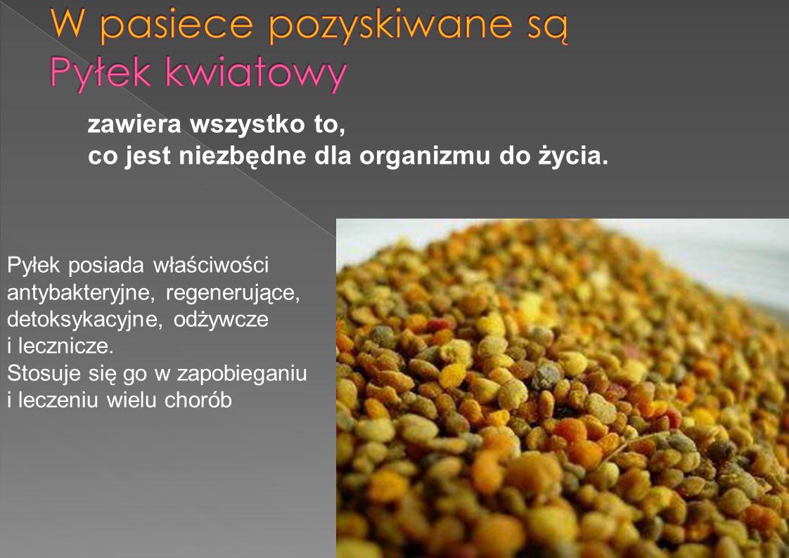 zawiera wszystko to, co jest niezbędne dla organizmu do życia. Pyłek posiada właściwości antybakteryjne, regenerujące, detoksykacyjne, odżywcze i lecz