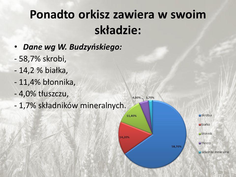 Ponadto orkisz zawiera w swoim składzie: Dane wg W. Budzyńskiego: - 58,7% skrobi, - 14,2 % białka, - 11,4% błonnika, - 4,0% tłuszczu, - 1,7% składnikó
