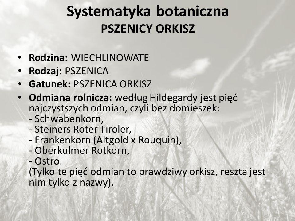 Systematyka botaniczna PSZENICY ORKISZ Rodzina: WIECHLINOWATE Rodzaj: PSZENICA Gatunek: PSZENICA ORKISZ Odmiana rolnicza: według Hildegardy jest pięć