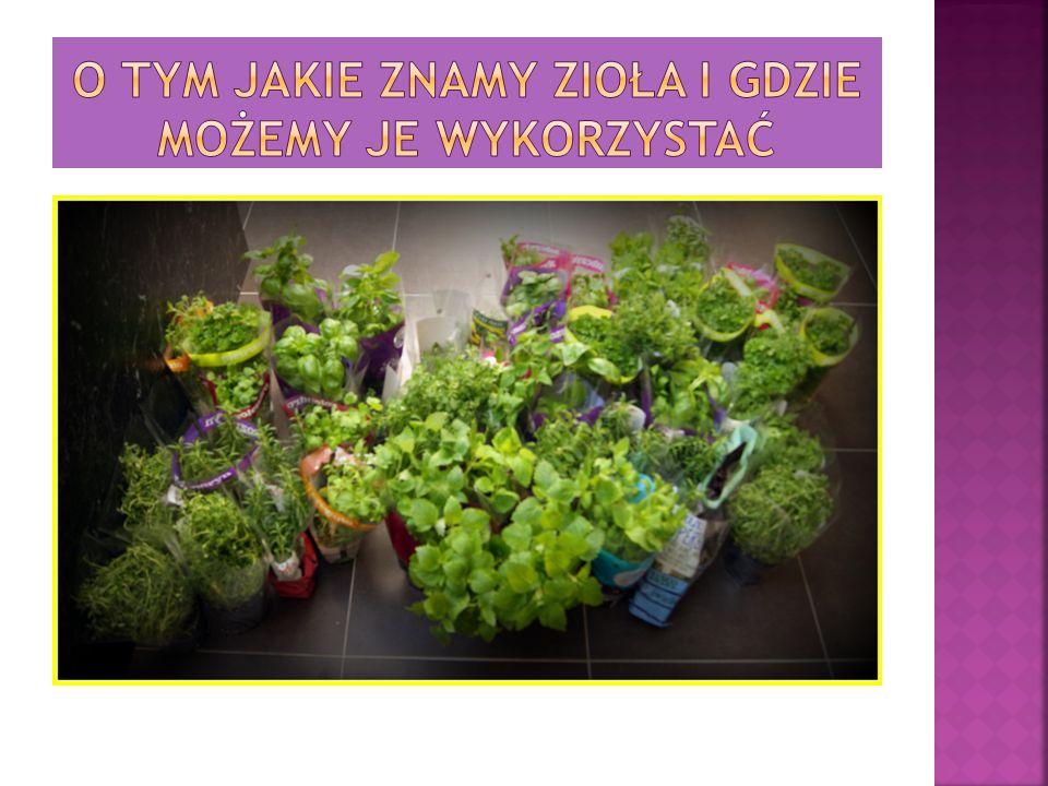 Ludzie w zasięgu zioła maja, Szkoda, że rzadko ich używają.