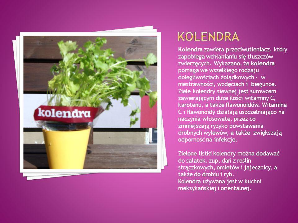 Kolendra zawiera przeciwutleniacz, który zapobiega wchłanianiu się tłuszczów zwierzęcych. Wykazano, że kolendra pomaga we wszelkiego rodzaju dolegliwo
