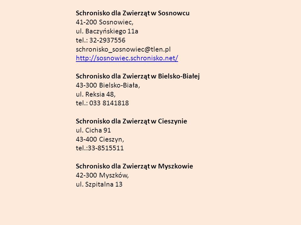 Schronisko dla Zwierząt w Sosnowcu 41-200 Sosnowiec, ul. Baczyńskiego 11a tel.: 32-2937556 schronisko_sosnowiec@tlen.pl http://sosnowiec.schronisko.ne