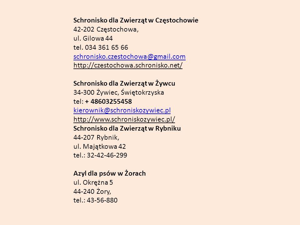 Schronisko dla Zwierząt w Częstochowie 42-202 Częstochowa, ul. Gilowa 44 tel. 034 361 65 66 schronisko.czestochowa@gmail.com http://czestochowa.schron
