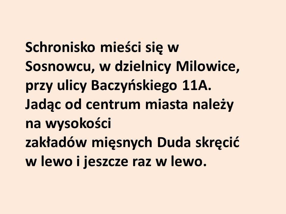 Schronisko mieści się w Sosnowcu, w dzielnicy Milowice, przy ulicy Baczyńskiego 11A. Jadąc od centrum miasta należy na wysokości zakładów mięsnych Dud