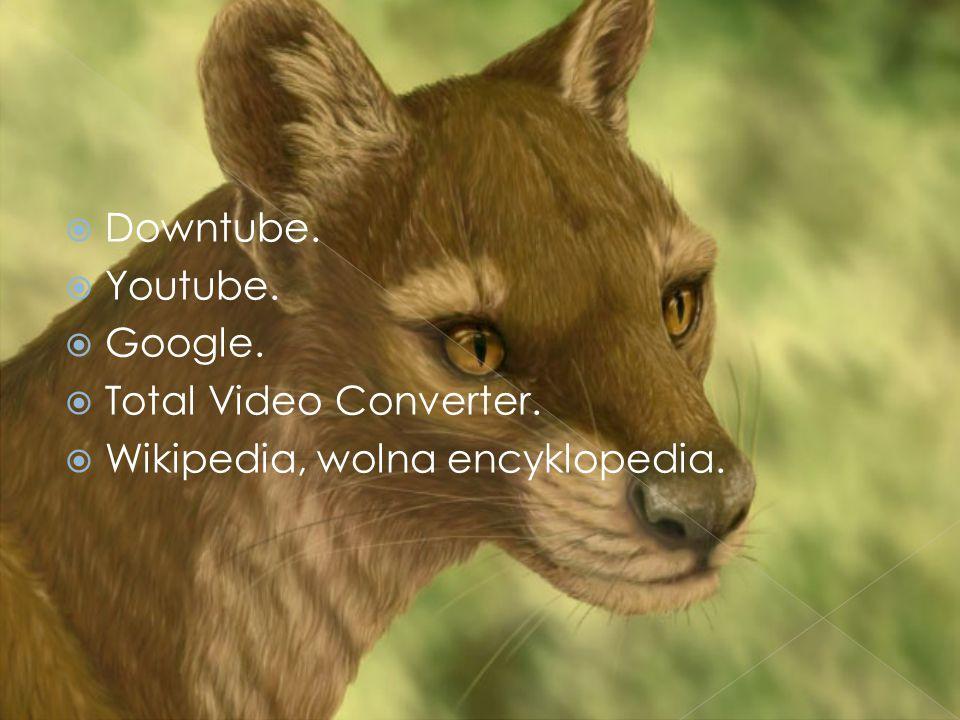  Downtube.  Youtube.  Google.  Total Video Converter.  Wikipedia, wolna encyklopedia.