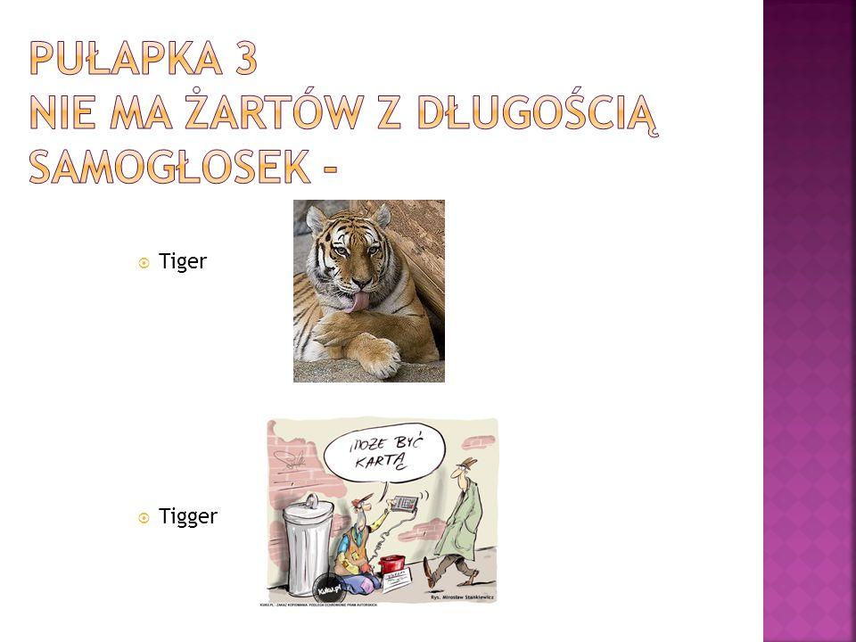  Tiger  Tigger