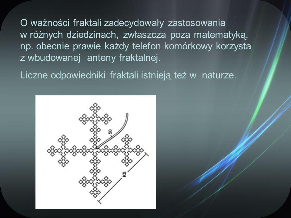 O ważności fraktali zadecydowały zastosowania w różnych dziedzinach, zwłaszcza poza matematyką, np.