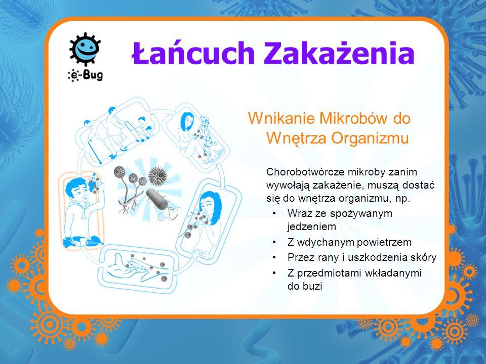 Łańcuch Zakażenia Wnikanie Mikrobów do Wnętrza Organizmu Chorobotwórcze mikroby zanim wywołają zakażenie, muszą dostać się do wnętrza organizmu, np. W