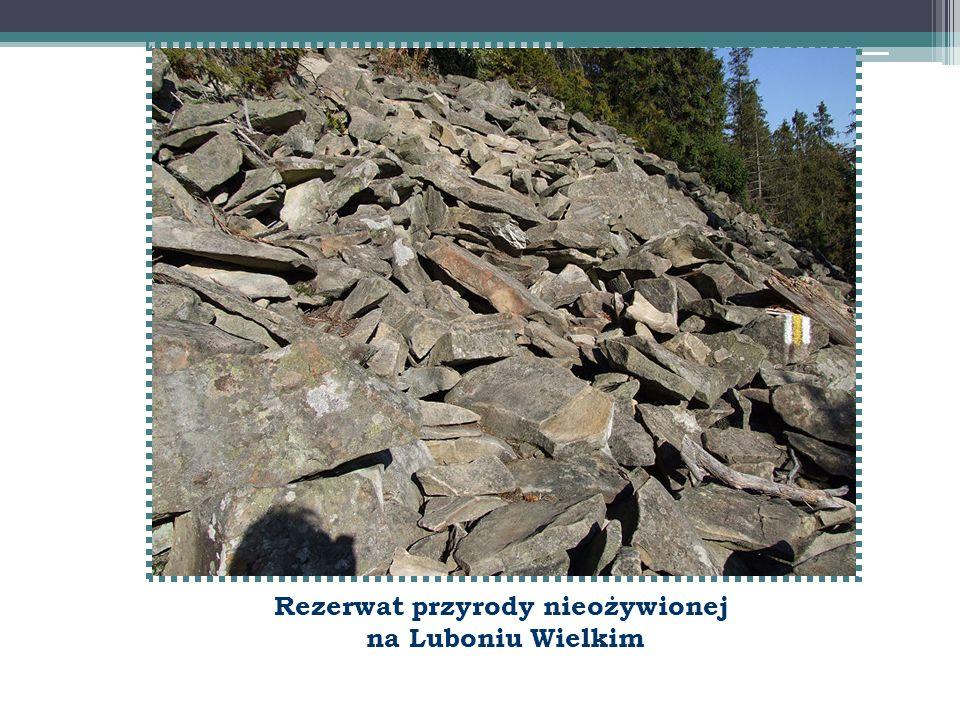 Rezerwat przyrody nieożywionej na Luboniu Wielkim