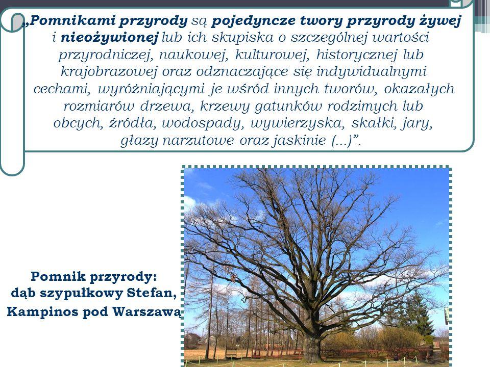 """""""Pomnikami przyrody są pojedyncze twory przyrody żywej i nieożywionej lub ich skupiska o szczególnej wartości przyrodniczej, naukowej, kulturowej, his"""