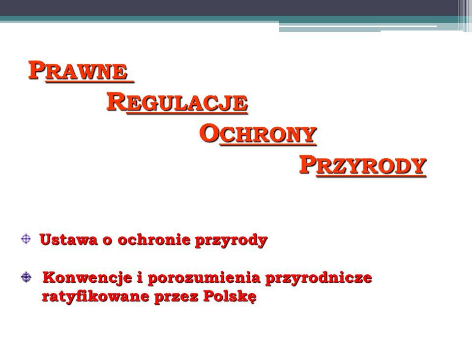 P RAWNE R EGULACJE R EGULACJE O CHRONY O CHRONY P RZYRODY P RZYRODY Ustawa o ochronie przyrody Konwencje i porozumienia przyrodnicze Konwencje i porozumienia przyrodnicze ratyfikowane przez Polskę ratyfikowane przez Polskę