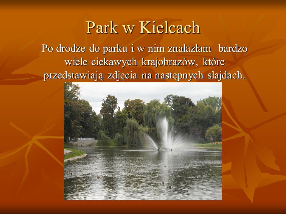 Park w Kielcach Po drodze do parku i w nim znalazłam bardzo wiele ciekawych krajobrazów, które przedstawiają zdjęcia na następnych slajdach.