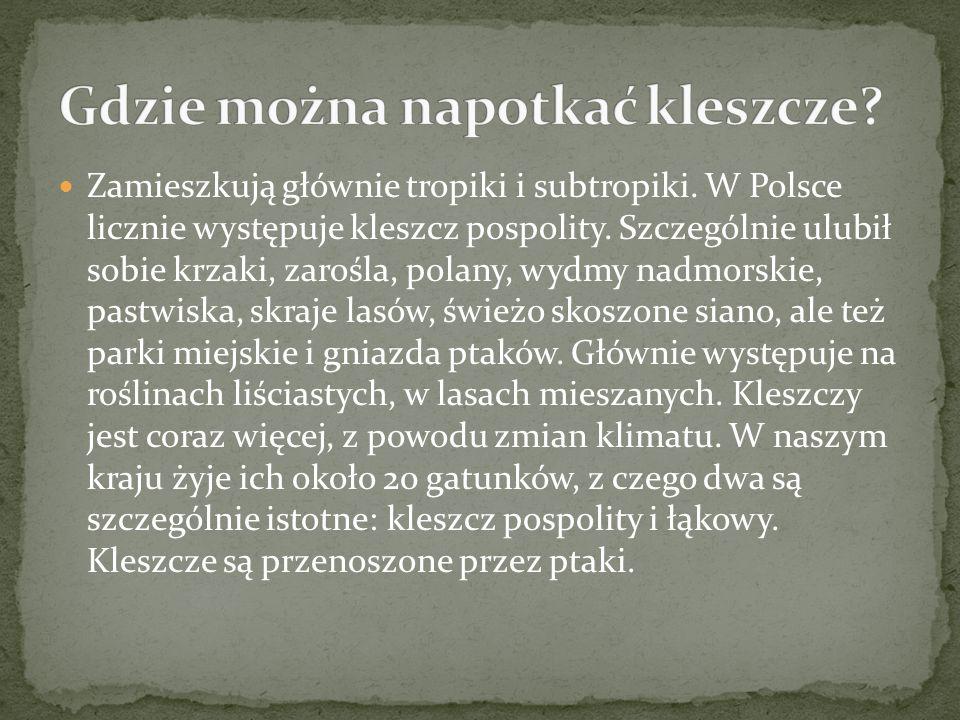 Zamieszkują głównie tropiki i subtropiki.W Polsce licznie występuje kleszcz pospolity.