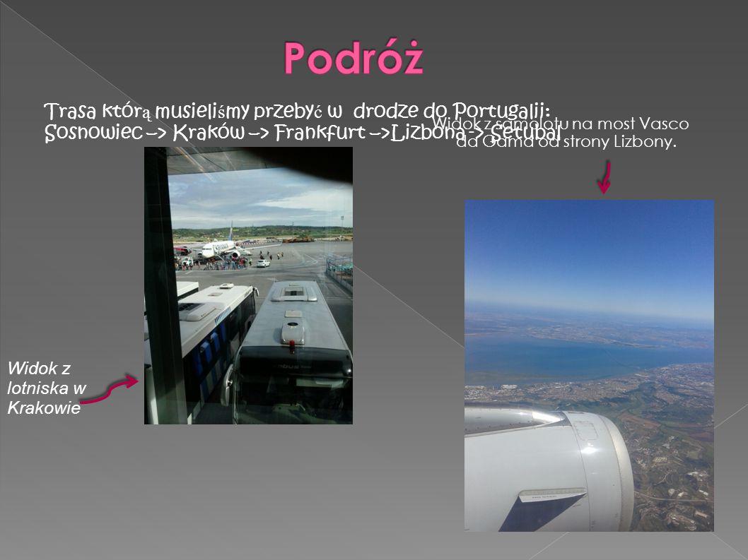 Widok z lotniska w Krakowie Na lotnisk zawiozły nas wcze ś niej przygotowane busy. Trasa któr ą musieli ś my przeby ć w drodze do Portugalii: Sosnowie
