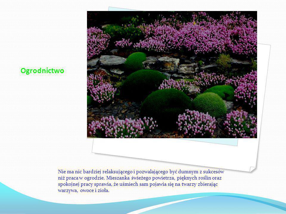 Ogrodnictwo Nie ma nic bardziej relaksującego i pozwalającego być dumnym z sukcesów niż praca w ogrodzie.