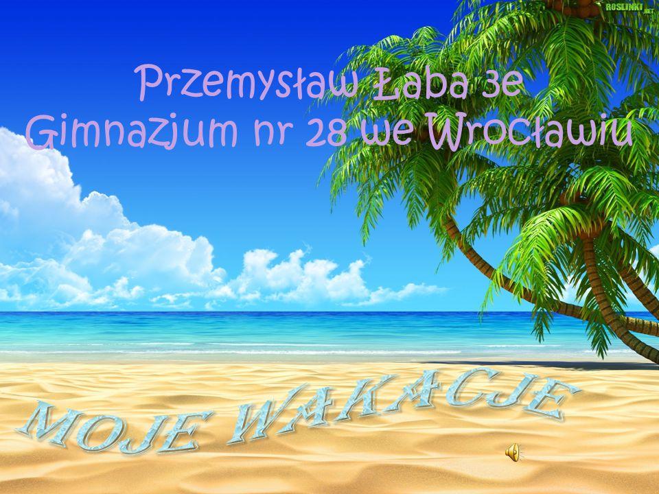 Przemysław Łaba 3e Gimnazjum nr 28 we Wrocławiu