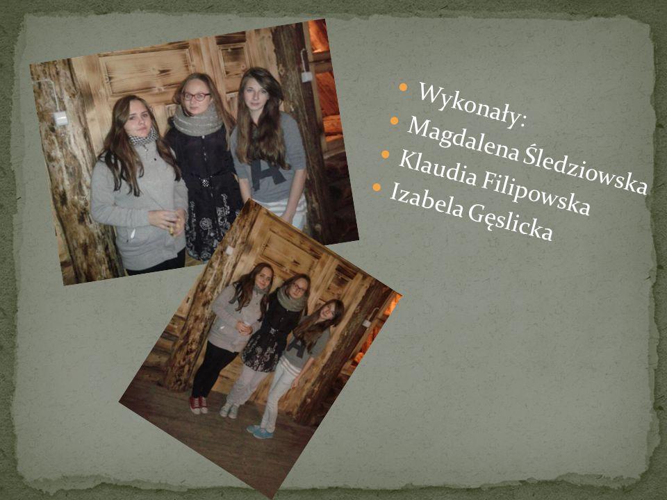 Wykonały: Magdalena Śledziowska Klaudia Filipowska Izabela Gęslicka