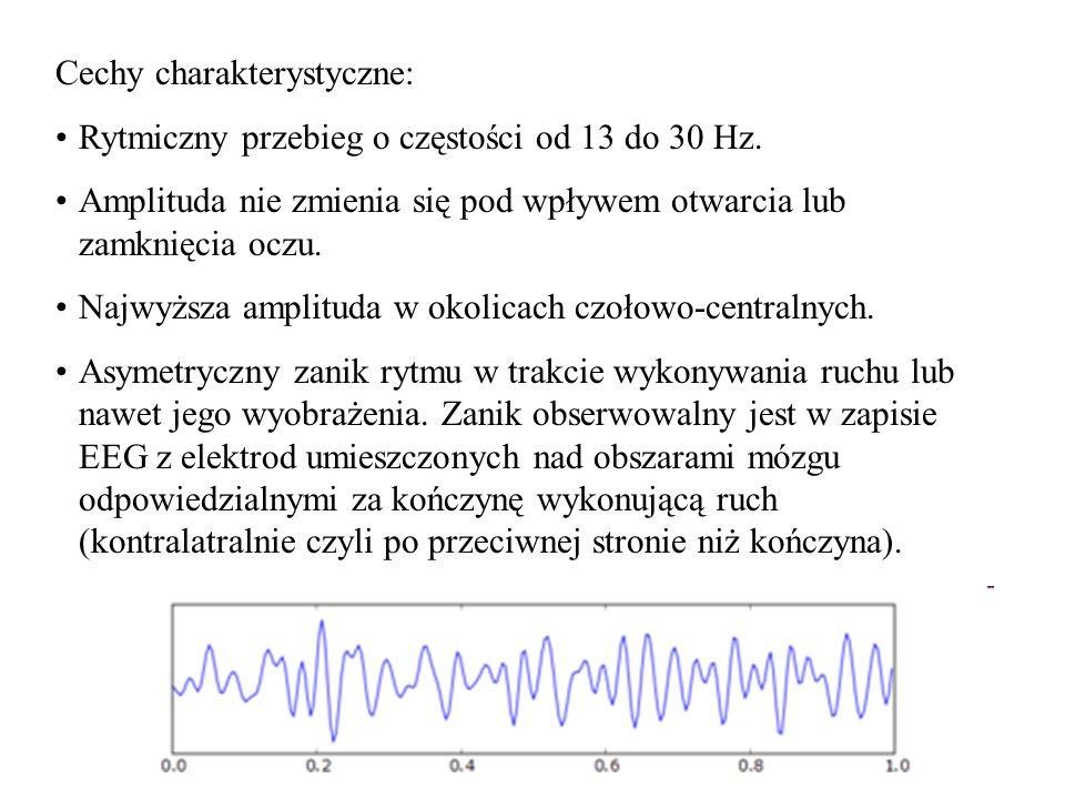 32 Cechy charakterystyczne: Rytmiczny przebieg o częstości od 13 do 30 Hz. Amplituda nie zmienia się pod wpływem otwarcia lub zamknięcia oczu. Najwyżs