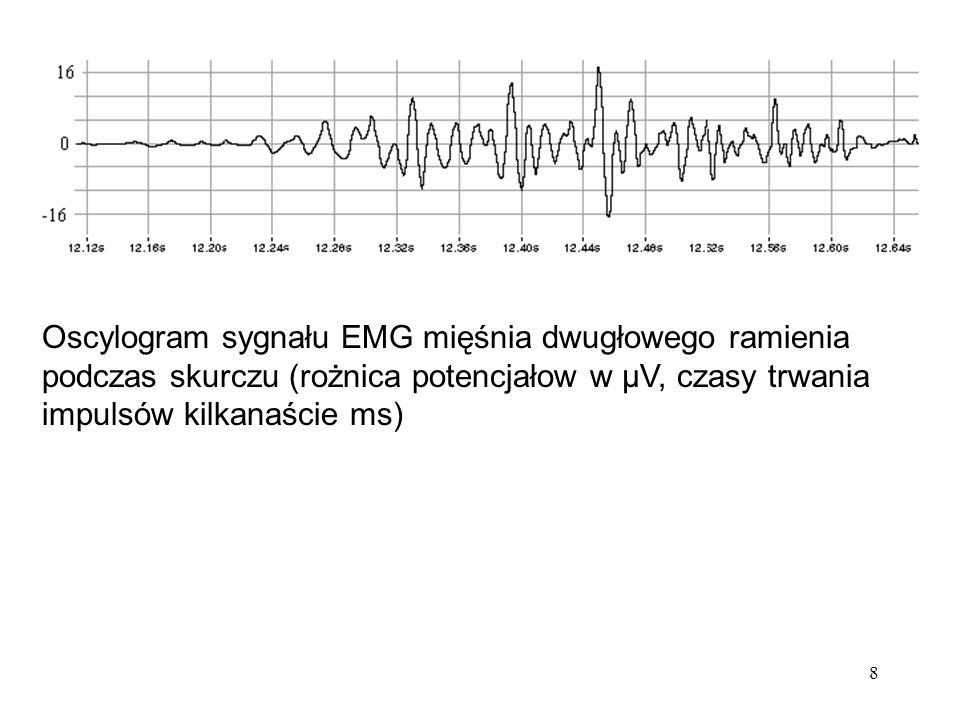 8 Oscylogram sygnału EMG mięśnia dwugłowego ramienia podczas skurczu (rożnica potencjałow w μV, czasy trwania impulsów kilkanaście ms)