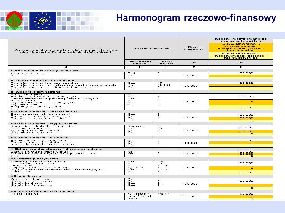 Przykładowe wypełnienie kolumn 2-6 Harmonogramu rzeczowo-finansowego: Harmonogram rzeczowo-finansowy