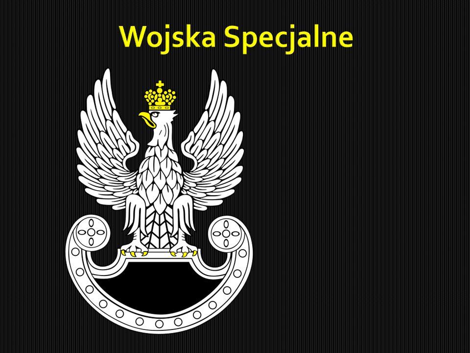  Jednostka wojskowa Wojsk Specjalnych Rzeczypospolitej Polskiej, sformowana 13 lipca 1990 w odpowiedzi na postrzelenie przez terrorystów 30 marca 1990 w Bejrucie dwóch Polaków, w odwecie za pomoc polskiego rządu w emigracji Żydów z ZSRR do Izraela.