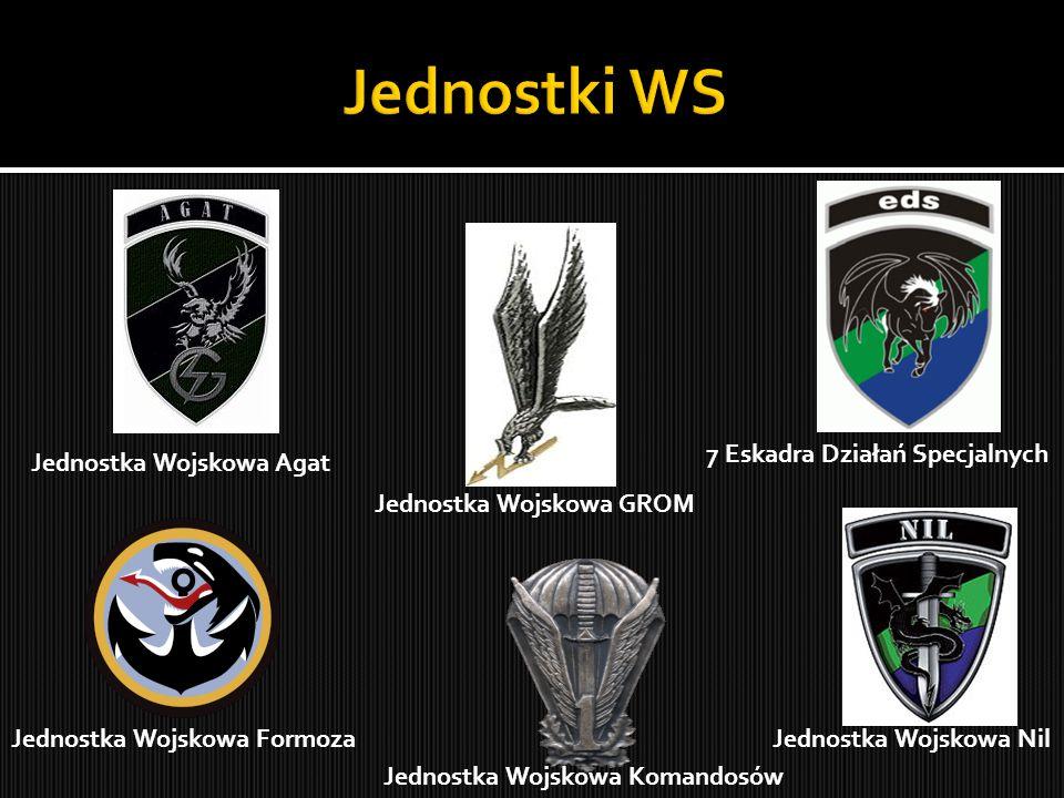 Jednostka Wojskowa Agat Jednostka Wojskowa Formoza Jednostka Wojskowa GROM Jednostka Wojskowa Komandosów Jednostka Wojskowa Nil 7 Eskadra Działań Spec