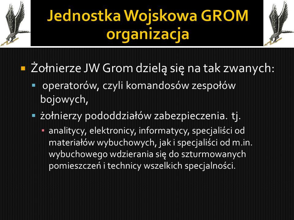 Żołnierze JW Grom dzielą się na tak zwanych:  operatorów, czyli komandosów zespołów bojowych,  żołnierzy pododdziałów zabezpieczenia. tj. ▪ analit