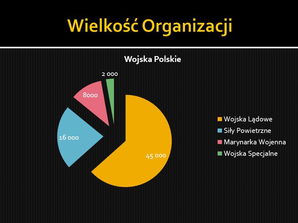  Wojska Specjalne powołane zostały Ustawą z dnia 24 maja 2007 o zmianie Ustawy o powszechnym obowiązku obrony Rzeczypospolitej Polskiej oraz o zmianie niektórych innych ustawa.