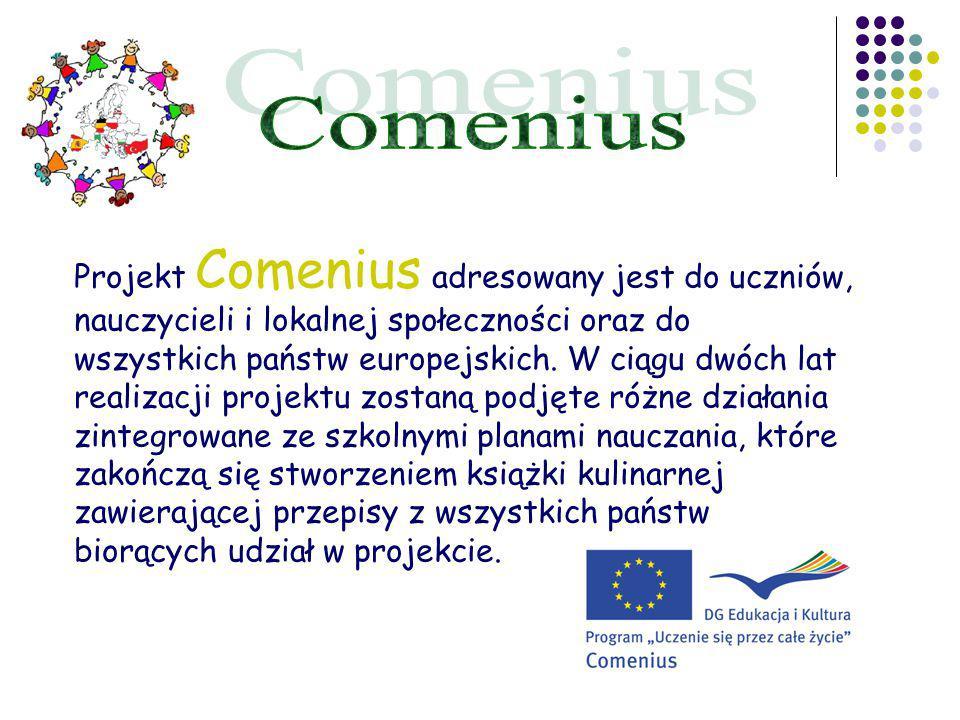 Projekt Comenius adresowany jest do uczniów, nauczycieli i lokalnej społeczności oraz do wszystkich państw europejskich.