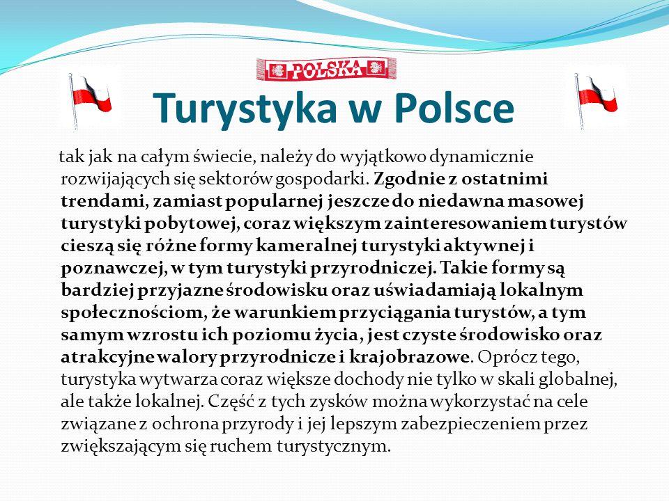 Turystyka w Polsce tak jak na całym świecie, należy do wyjątkowo dynamicznie rozwijających się sektorów gospodarki. Zgodnie z ostatnimi trendami, zami