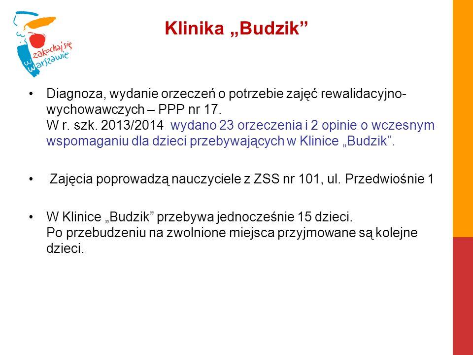 """Klinika """"Budzik"""" Diagnoza, wydanie orzeczeń o potrzebie zajęć rewalidacyjno- wychowawczych – PPP nr 17. W r. szk. 2013/2014 wydano 23 orzeczenia i 2 o"""