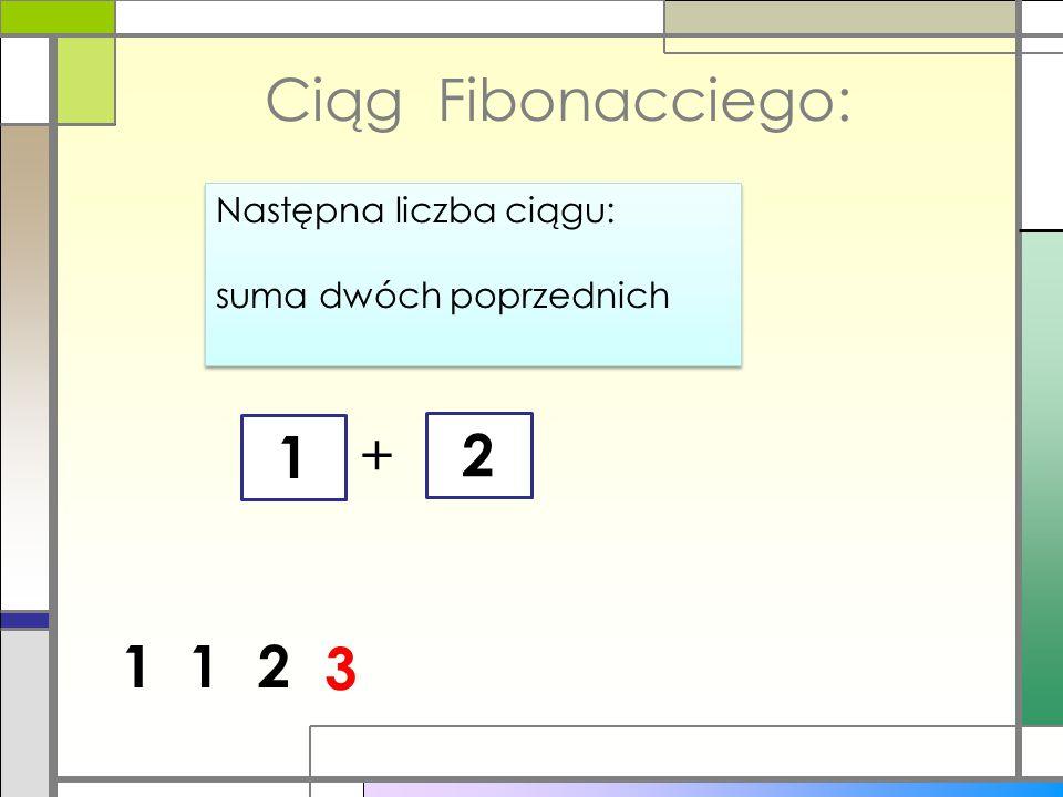 Obraz spirali Fibonacciego: Widać, że (pomijając dwa pierwsze, najmniejsze) kolejne kwadraty są większe od poprzedzających dokładnie o sumę ich ścianek zgodnie z regułą ciągu Fibonacciego.