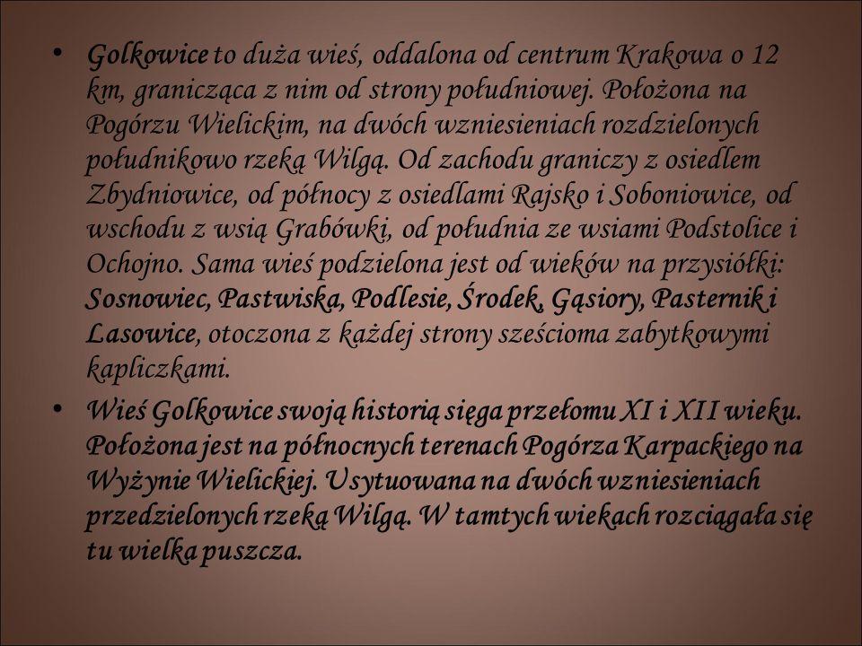 Golkowice to duża wieś, oddalona od centrum Krakowa o 12 km, granicząca z nim od strony południowej. Położona na Pogórzu Wielickim, na dwóch wzniesien