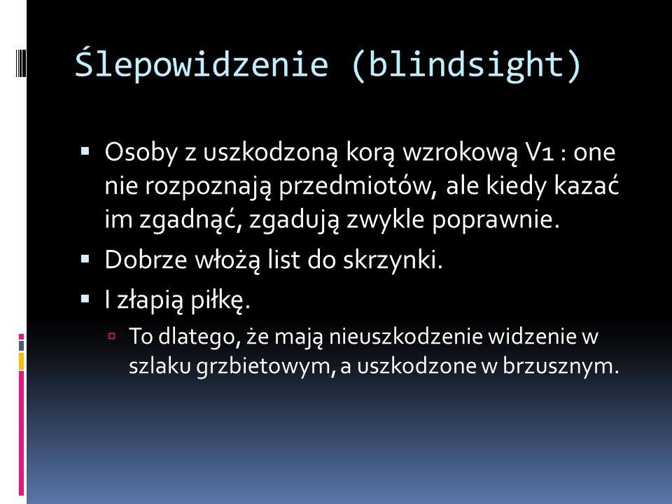 Ślepowidzenie (blindsight)  Osoby z uszkodzoną korą wzrokową V1 : one nie rozpoznają przedmiotów, ale kiedy kazać im zgadnąć, zgadują zwykle poprawnie.