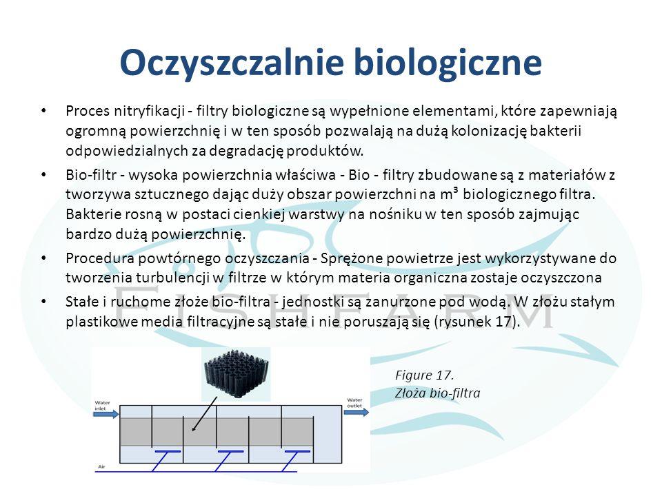 Oczyszczalnie biologiczne Proces nitryfikacji - filtry biologiczne są wypełnione elementami, które zapewniają ogromną powierzchnię i w ten sposób pozwalają na dużą kolonizację bakterii odpowiedzialnych za degradację produktów.