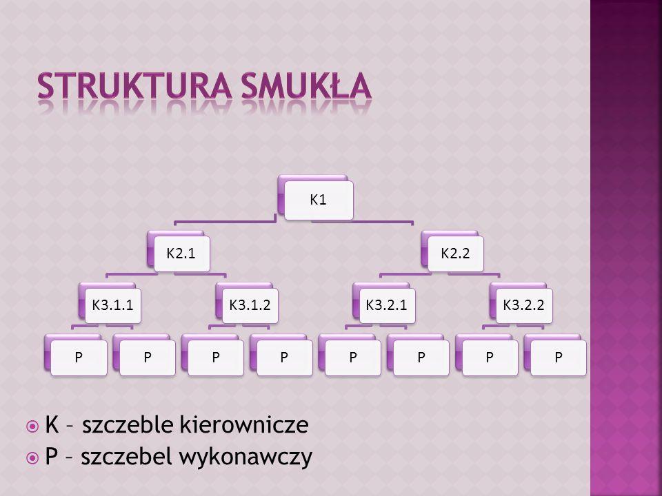  K – szczeble kierownicze  P – szczebel wykonawczy K1 K2.1K3.1.1PPK3.1.2PPK2.2K3.2.1PPK3.2.2PP