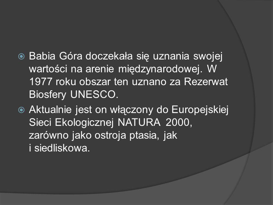  Babia Góra doczekała się uznania swojej wartości na arenie międzynarodowej. W 1977 roku obszar ten uznano za Rezerwat Biosfery UNESCO.  Aktualnie j