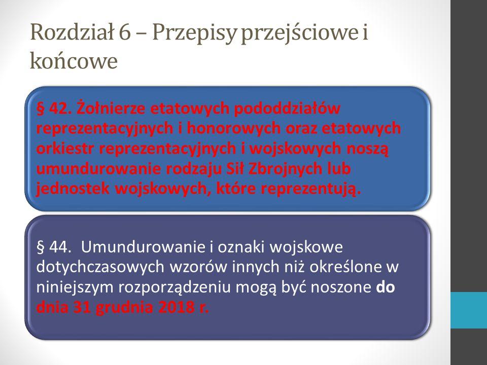 Rozdział 6 – Przepisy przejściowe i końcowe § 42.