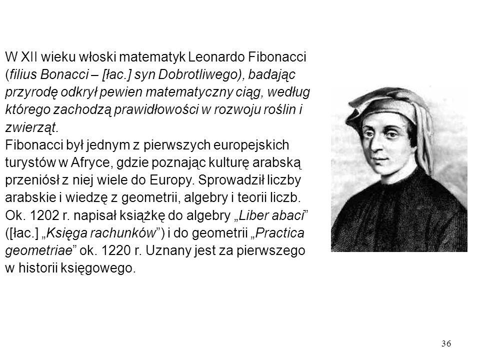 36 W XII wieku włoski matematyk Leonardo Fibonacci (filius Bonacci – [łac.] syn Dobrotliwego), badając przyrodę odkrył pewien matematyczny ciąg, według którego zachodzą prawidłowości w rozwoju roślin i zwierząt.