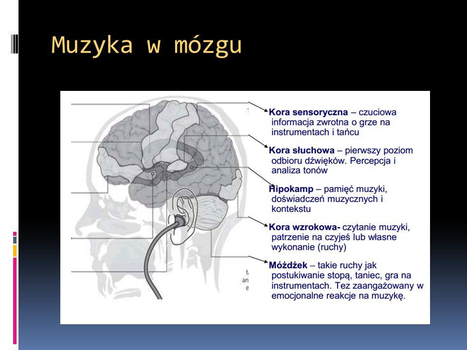 Muzyka w mózgu
