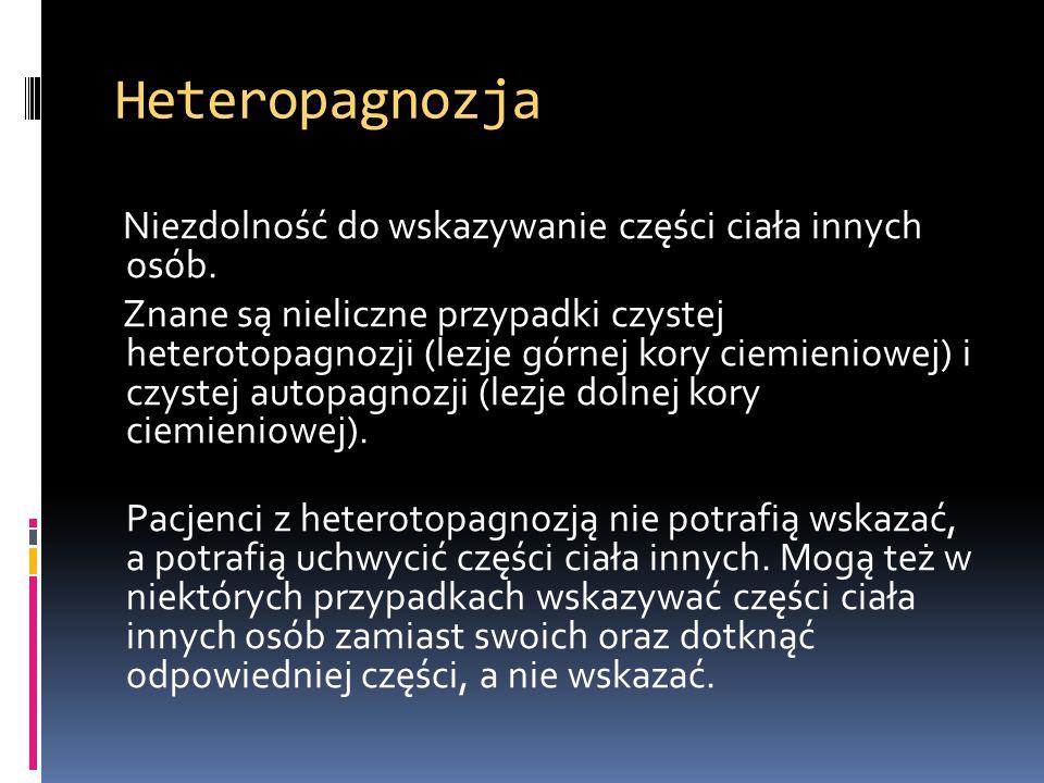 Heteropagnozja Niezdolność do wskazywanie części ciała innych osób. Znane są nieliczne przypadki czystej heterotopagnozji (lezje górnej kory ciemienio
