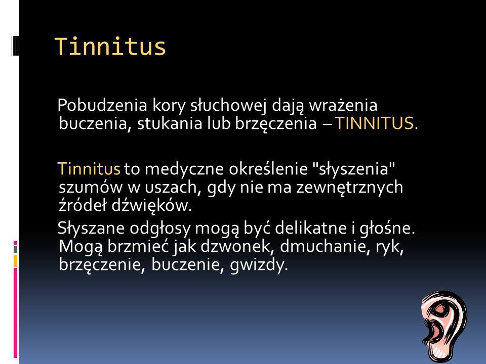 Tinnitus Pobudzenia kory słuchowej dają wrażenia buczenia, stukania lub brzęczenia – TINNITUS. Tinnitus to medyczne określenie