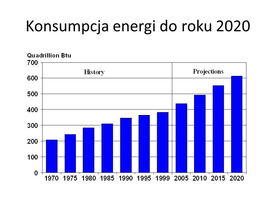 Konsumpcja energi do roku 2020