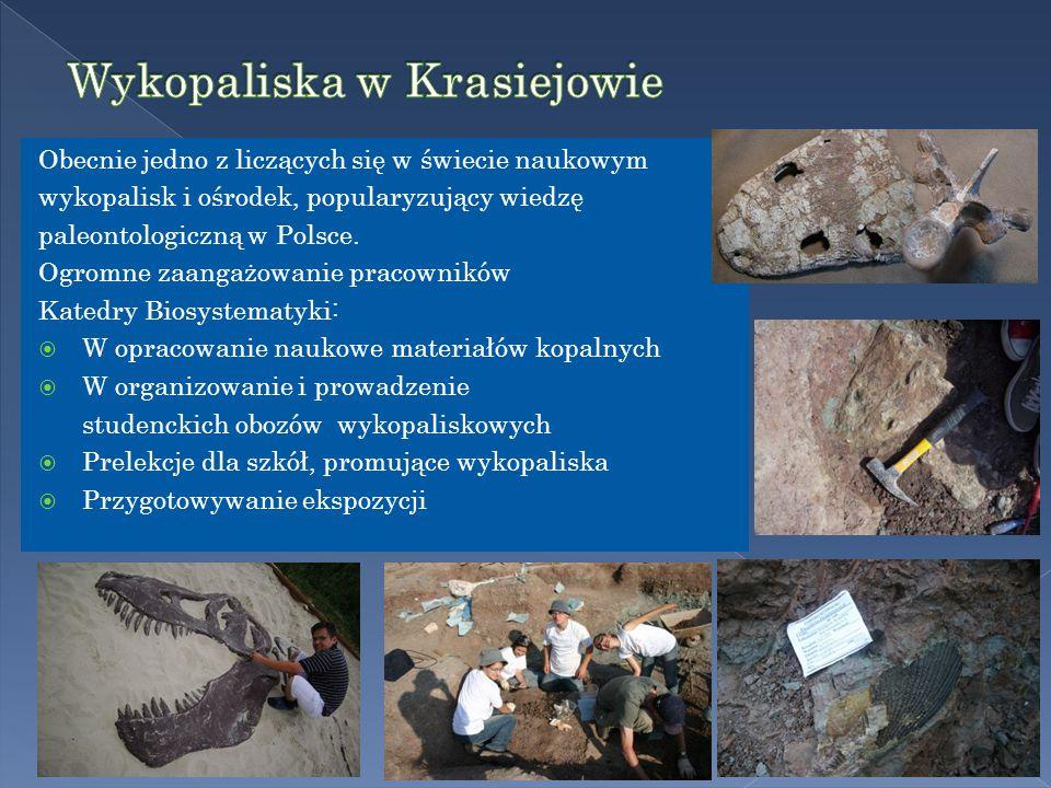 Obecnie jedno z liczących się w świecie naukowym wykopalisk i ośrodek, popularyzujący wiedzę paleontologiczną w Polsce.