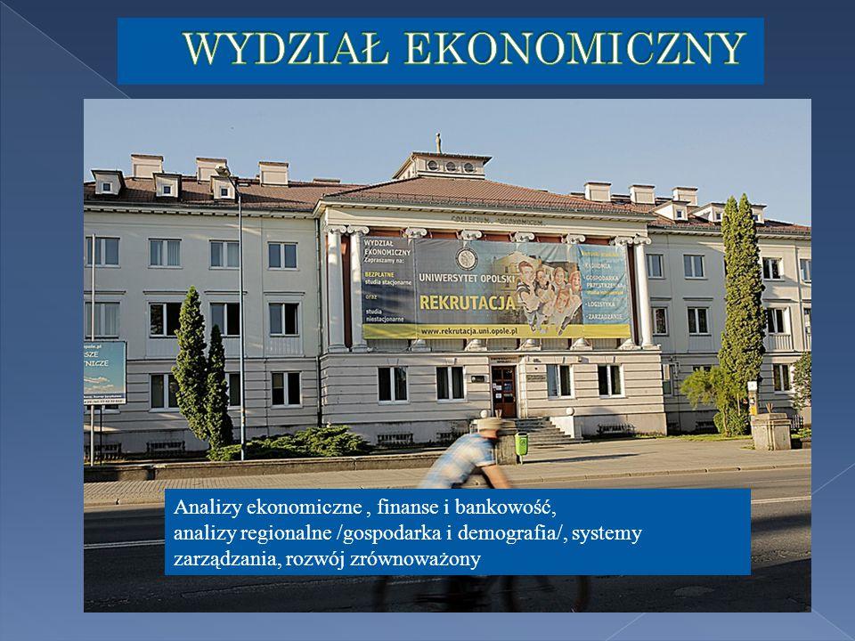 Analizy ekonomiczne, finanse i bankowość, analizy regionalne /gospodarka i demografia/, systemy zarządzania, rozwój zrównoważony