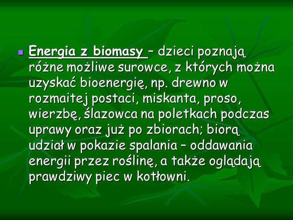 Energia z biomasy – dzieci poznają różne możliwe surowce, z których można uzyskać bioenergię, np.