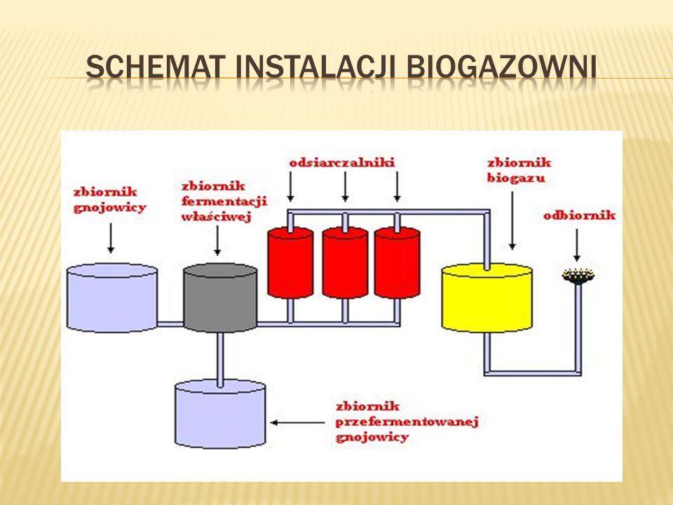 Biogaz podlega sprężaniu - w przypadku dużej ilości substancji toksycznych, również oczyszczaniu - a następnie przejściowo jest przechowywany w zbiorniku gazu.