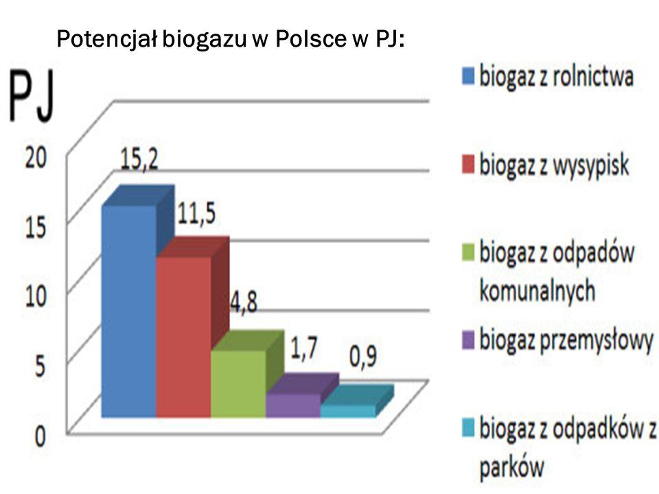 Zalety: -produkcja biogazu jest przyjazna ekologicznie -w jej wyniku z odpadów pozyskiwany jest metan, który jest gazem cieplarnianym -podczas produkcji powstaje substancja pofermentacyjna, którą można stosować jako nawóz Wady: -koszty inwestycyjne