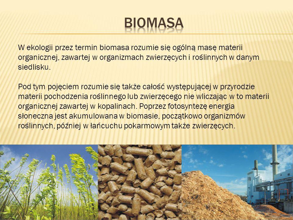W ekologii przez termin biomasa rozumie się ogólną masę materii organicznej, zawartej w organizmach zwierzęcych i roślinnych w danym siedlisku. Pod ty