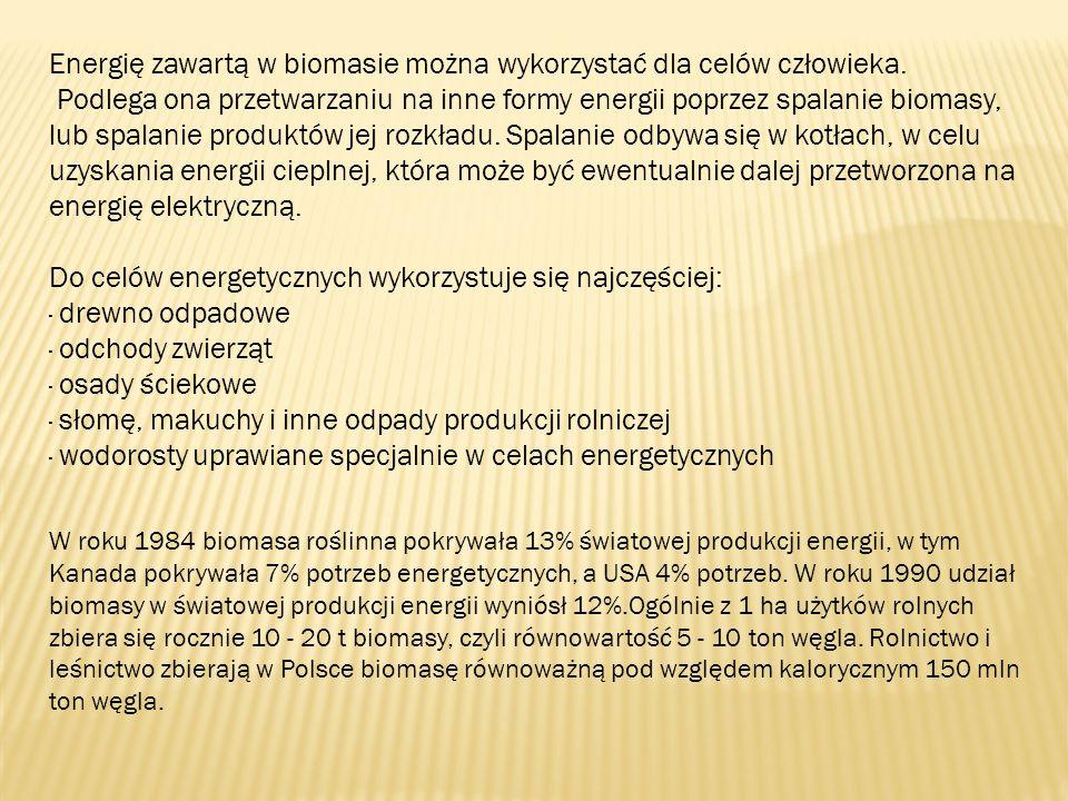 Energię zawartą w biomasie można wykorzystać dla celów człowieka. Podlega ona przetwarzaniu na inne formy energii poprzez spalanie biomasy, lub spalan